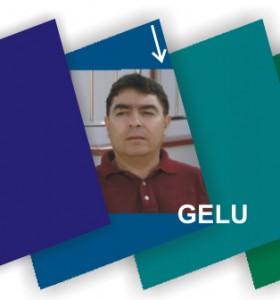 Vox Manual Istorie Gelu